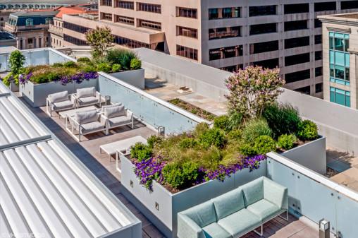 Rooftop Custom Planters